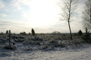 Winter2009 in der Lüneburger Heide
